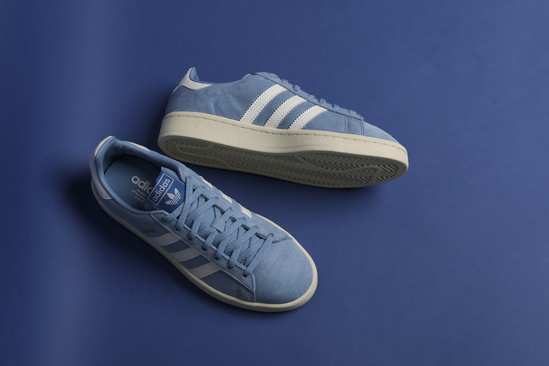 9a3bd4e2bb51ea ... Купить женские голубые кроссовки adidas Originals Campus W - фото 4  картинки ...