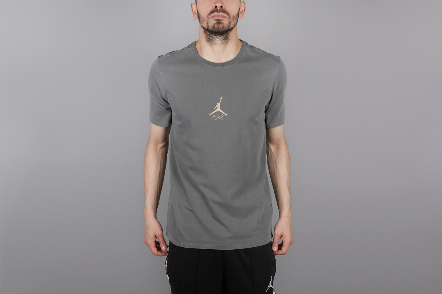 Мужская серая футболка Jordan SS Wings Washed Tee