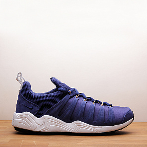 Кроссовки Nike Air Zoom Spirimic