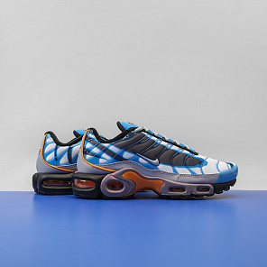 Кроссовки Nike Air Max Plus PRM