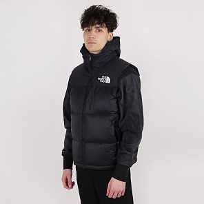 Жилет The North Face 1996 Rtro Npse Vst