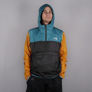 Куртка The North Face Fanorak